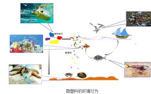 综述国内外水环境中微塑料的调查方法