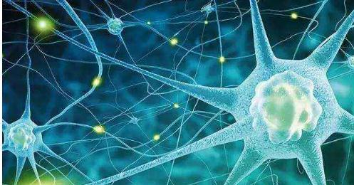 探讨阿尔茨海默病领域的研究成果和热点问题
