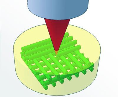 新方法可对二维(2D)水凝胶进行编程