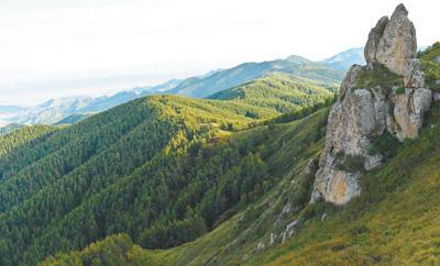 苏木山林场:荒山秃岭变18.6万亩森林