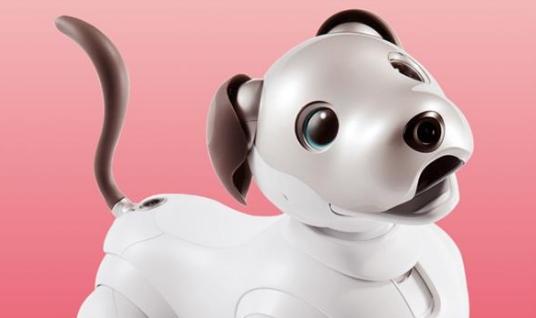 索尼机器狗Aibo登陆美国市场:售价2899美元