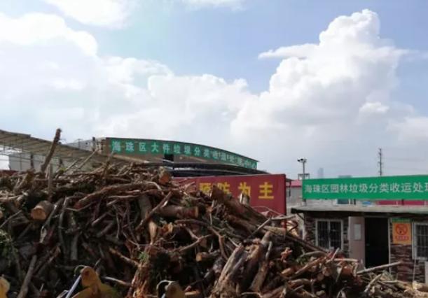 """台风""""山竹""""过后倒伏树木被循环利用"""