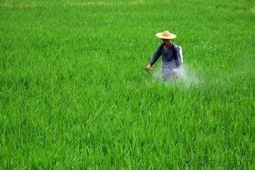 全国农药新剂型纳米农药应用技术现状