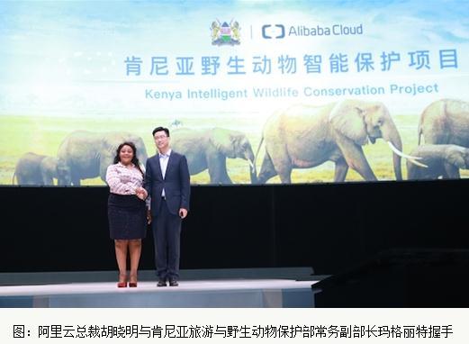 阿里云构建数字化系统保护肯尼亚野生动物