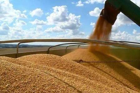 """阿根廷从美国进口大豆再高价出口到中国,做起了""""倒爷""""!"""