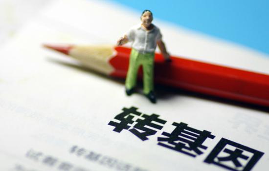 中国人体内已出现转基因作物中常见的基因?谣言!