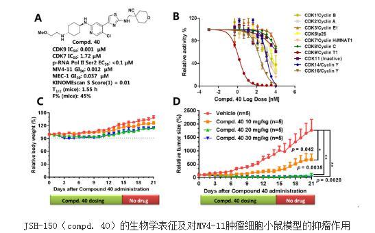 一种高选择性、高活性的CDK9激酶抑制剂JSH-150