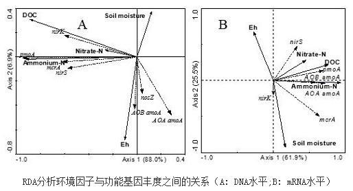 揭示在mRNA水平上有活性的功能基因丰度