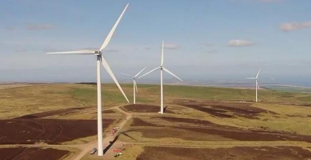 风电场究竟会对环境造成什么样的影响?