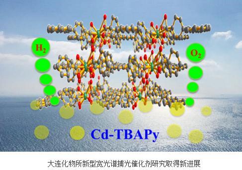 一种Cd-MOFs新结构单晶
