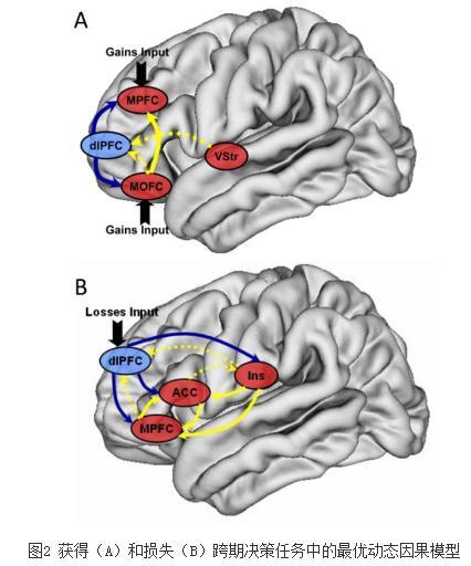 获得-损失领域下跨期决策的神经机制研究