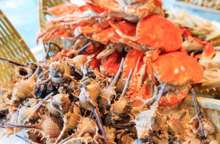 辽宁海警第一支队破获一起涉嫌非法捕捞水产品案价值600万水产品