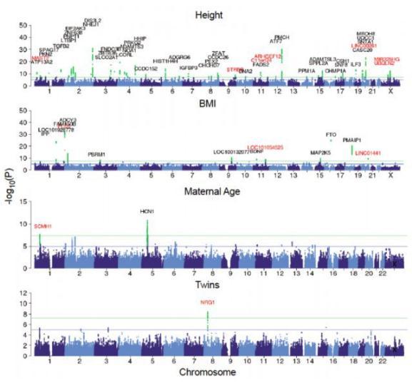 揭秘怀双胞胎基因:携带NRG1基因的突变有更高几率怀上双胞胎