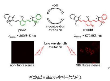 新型羟基自由基光学探针提高对-OH的捕获能力