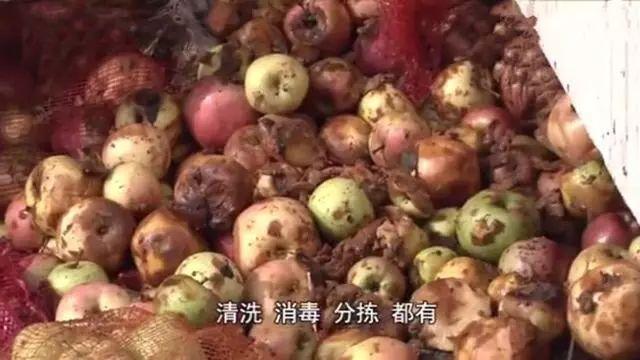 青岛海升果(清谷田园果汁饮料)使用严重腐烂水果加工果汁被曝光