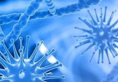 T细胞功能TIDE算法预测免疫治疗疗效