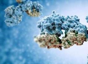 靶点酶的作用什么?治疗自身免疫性疾病