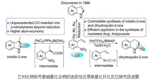 五元环和六元环内酰胺高效制备方法