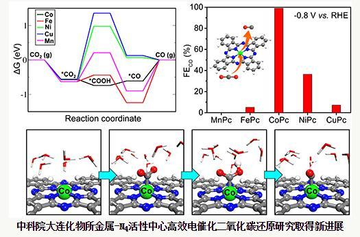 高性能金属-氮-碳催化剂反应机理研究进展