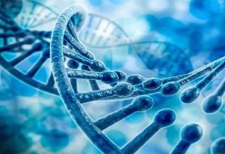为何要做基因检测?基因检测靠谱吗?