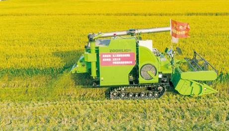 我国首批无人耕作的大米即将正式上市