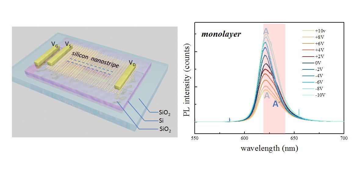 中山大学杨国伟教授研究组在纳米光子学全介质材料领域取得重要研究进展