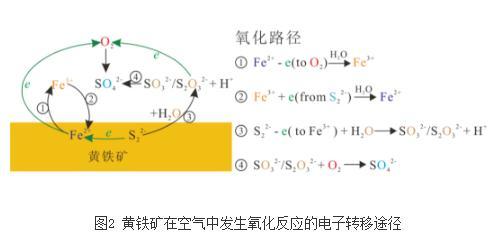 揭示黄铁矿-水界面反应的微观机理和结构本质