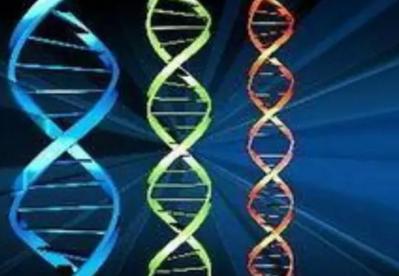 针对不同情况,如何正确合理的选择基因检测?