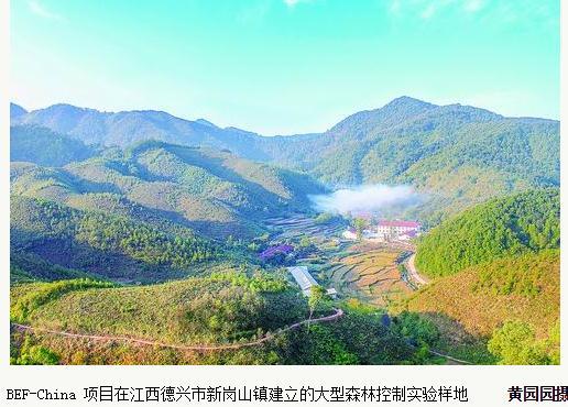 森林控制BEF-China实验:生物多样性就是直接导致更高碳储量的原因