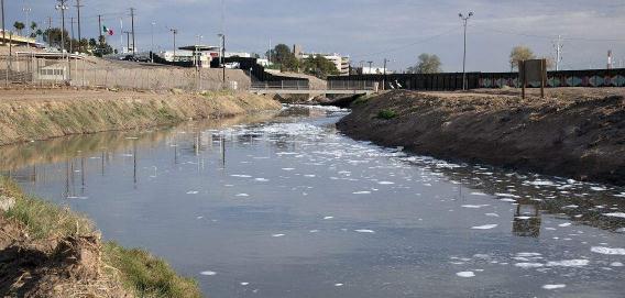 墨尔本附近河流出现严重污染,河岸蜘蛛体内检测到60多种药物化合物
