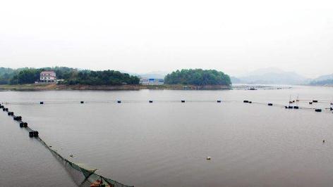 湖北省黄石市有色湖退垸还湖成当地典型案例