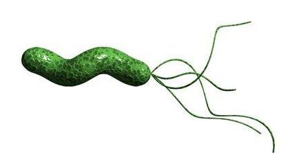 幽门螺杆菌标准值是多少?幽门螺杆菌如何根治?