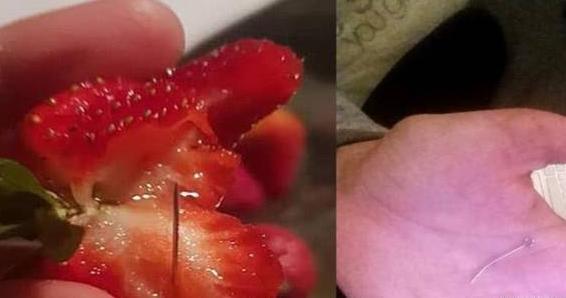 澳洲草莓藏针事件:越南裔50岁草莓农场女雇员Trinh将面临10年监禁