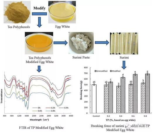 茶多酚改性的蛋清对鱼糜凝胶理化性质和微观结构性能的影响