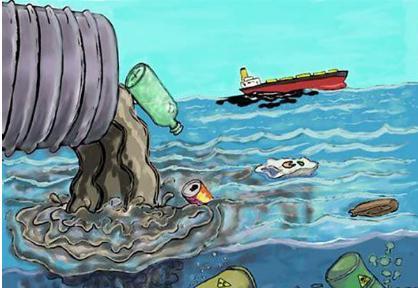 持久性有机污染物侵蚀世界海洋中最深处