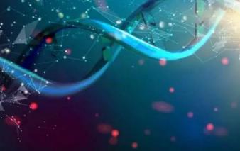 基因诊断将开启个体化医疗时代