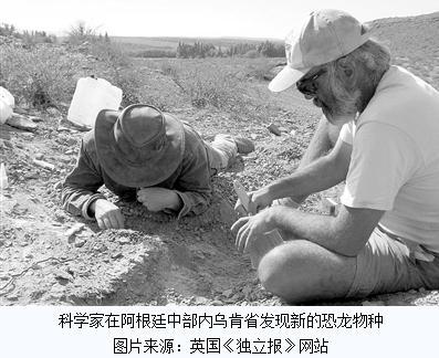 阿根廷中部内乌肯省发现蜥脚类恐龙