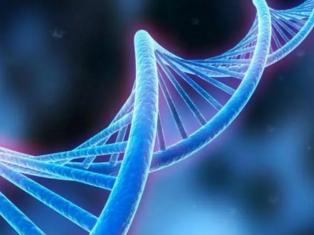 临床外显子组测序经研究发现可诊断25%的疾病