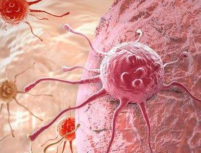 超级细菌:新的沙门氏菌菌株对常用的抗生素具有耐药性