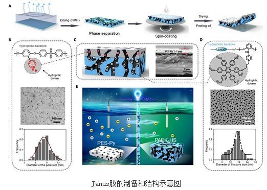 功能化聚芳醚的离子型聚合物制备系列Janus三维纳米多孔膜