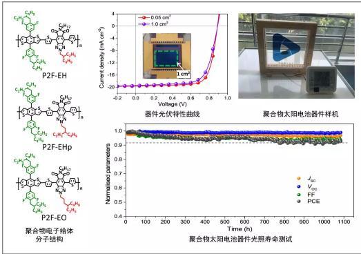 聚合物光伏材料:实现1 cm2聚合物太阳电池的认证光伏效率超过12%