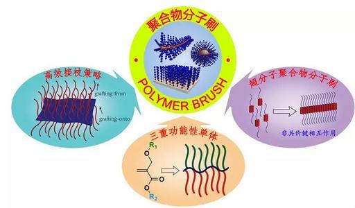 """基于""""三重官能性单体""""为核心的高效合成一维聚合物分子刷的策略"""