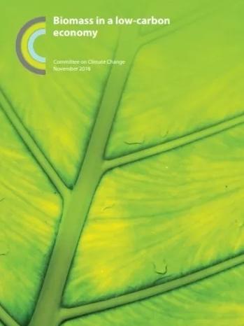 生物质原料将在英国经济脱碳中发挥重要作用