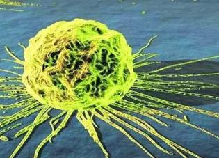 揭秘癌细胞中的存活机制:侵略性治疗后疾病可再次爆发