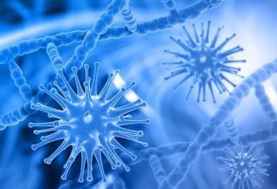 标记基因可预测肝病患者的预后情况