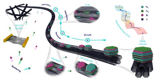 中国科学院金属研究所研制出一种高性能碲化铋/单壁碳纳米管柔性热电材料