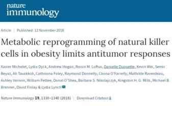 """为何""""胖子""""更容易得癌症?NK细胞被过度脂肪堵塞"""