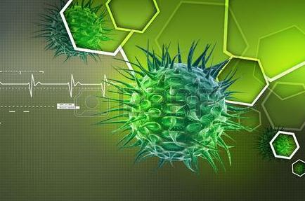 X射线荧光显微(XRF)的成像技术:单个细菌三维图像持成方法