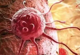 """科学家发现一种机制可让癌细胞""""自我毁灭"""""""