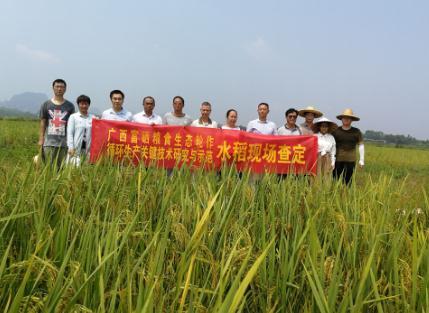 钦州:全国唯一的面向海洋的连片富硒土壤区域